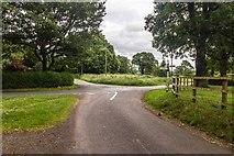 SJ8369 : Hodgehill by Peter McDermott