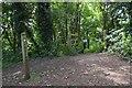SJ7857 : Entrance to Borrowpit Meadows off the Salt Line trail by Jonathan Hutchins