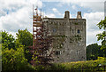 W7698 : Castles of Munster: Cregg, Cork by Mike Searle