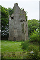 S0180 : Castles of Leinster: Ballinlough, Offaly (2) by Mike Searle