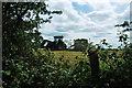 SJ9248 : Baling Hay (off Eaves Lane) by Stu JP