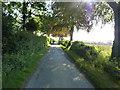 SU7519 : Emerging into sunlight near Sunwood Farm by Richard Law