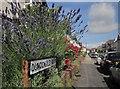 ST5775 : Dundonald Road, Redland by Derek Harper