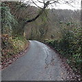 SO5000 : Minor patches on a minor road near Tintern Cross by Jaggery