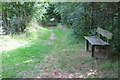 TL1047 : Bench in the Water End woodland by Philip Jeffrey
