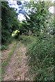 TL0948 : Path towards Dog Farm by Philip Jeffrey