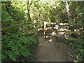 TL0652 : Entrance into Putnoe Wood by Adrian Cable