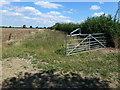 TL0994 : Field margin and farmland near Elton by Richard Humphrey