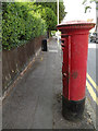 TL1214 : Maple Road George V Postbox by Adrian Cable