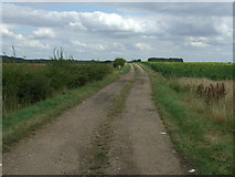 TL1646 : Farm track north of Upper Caldecote by JThomas