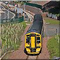 NT4936 : The Borders Railway at Galashiels Station : Week 34