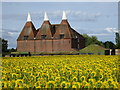 TQ7445 : Oast House at Little Mill Farm, Underlyn Lane, Marden by Oast House Archive