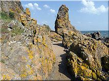 NH7661 : Coastal rocks below Craighead by Julian Paren