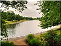SJ3787 : Sefton Park Boating Lake by David Dixon