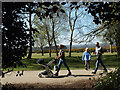 SP1096 : Three walks, so little time – Sutton Park, Easter Monday 2015 by Robin Stott
