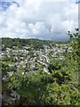 SX4371 : Gunnislake from Chimney Rock by David Smith