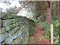SE5797 : Wallside Path through Woodland below Nab Ridge : Week 34