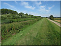 TL6181 : Footpath by the River Lark by Hugh Venables