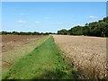 TL2745 : Bridleway near River Cam or Rhee by Robin Webster