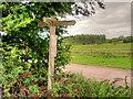 SJ4570 : Rural Signpost at Plemstall by David Dixon
