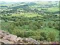 SK2575 : Wooded hillside between Curbar and Curbar Edge by Christine Johnstone