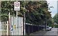 J3673 : 20 mph sign, Grand Parade, Belfast (September 2015) by Albert Bridge