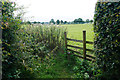 SD6710 : Path across a field near Hodgkinson's Farm by Bill Boaden