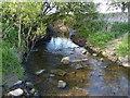 SK6307 : Melton Brook near Hamilton by Mat Fascione