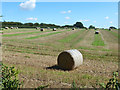 TL0316 : Field with straw bales by Robin Webster