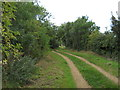 TF1306 : Footpath between Etton and Maxey by Paul Bryan