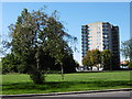 TQ3888 : Block of flats at Whipps Cross Roundabout by Marathon