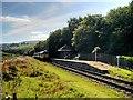 SD7920 : Irwell Vale Railway Halt, East Lancashire Railway by David Dixon