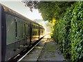 SD7920 : Train at Irwell Vale Halt by David Dixon