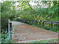 SJ8283 : River Bollin bridge by Stephen Burton