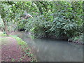 TQ2992 : Pymme's Brook in Arnos Park (3) by Mike Quinn