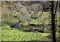 SX2283 : River Inny below Laneast by Derek Harper
