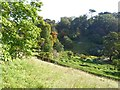 SW7727 : The maze at Glendurgan from the west by David Smith