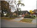 TQ3770 : Houses on Park Road, Beckenham by David Howard