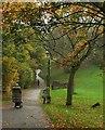 ST5775 : Redland Green by Derek Harper