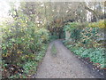SE0339 : Track - Race Moor Lane by Betty Longbottom
