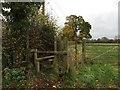 SJ7261 : Stile and footpath off Plant Lane by Jonathan Hutchins