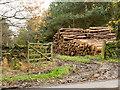 NZ0753 : Timber stack beyond gateway : Week 46