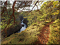 NJ0052 : River Findhorn Gorge Path : Week 47