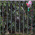 NT3824 : Festive yarn bombing at Ettrickbridge : Week 52