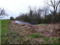 SU1090 : North Wilts Canal, Hayes Knoll by Vieve Forward