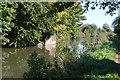 SU4567 : Kennet & Avon Canal by N Chadwick