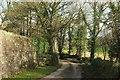 SX2163 : Lane at North Bosent by Derek Harper