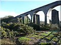 SW7840 : Part of the railway viaduct over the Carnon valley, Gwennap by Humphrey Bolton