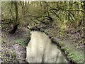 SJ5799 : Skitters Wood, Millingford Brook by David Dixon