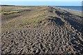 TG0744 : Shingle ridge near Salthouse by Derek Harper